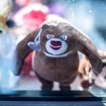 Stuffed Bear in the Window